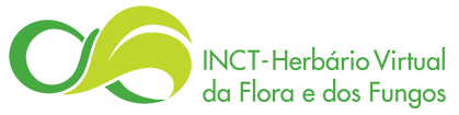 to the INCT - Herbario Virtual Portal